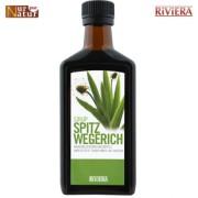 Spitzwegerich Sirup 250 ml